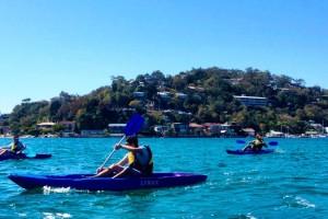 Pittwater Kayak Tours - Morning Kayak Tour